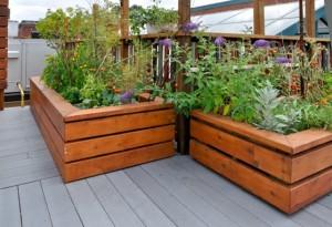 Garden Bed On Deck
